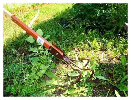 борьба с сорняками на огороде